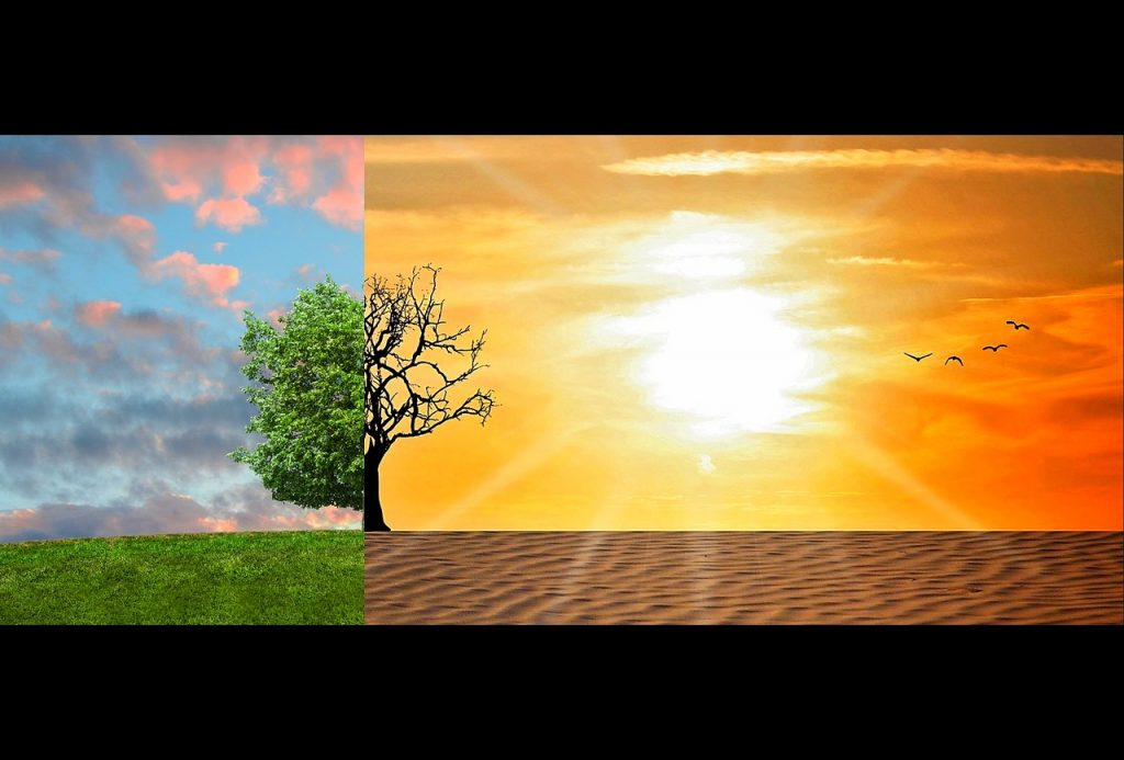 בקרת אקלים